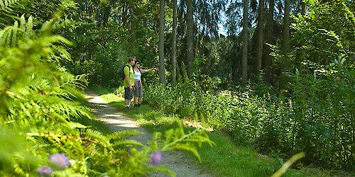 Wanderurlaub im Dreiburgenland